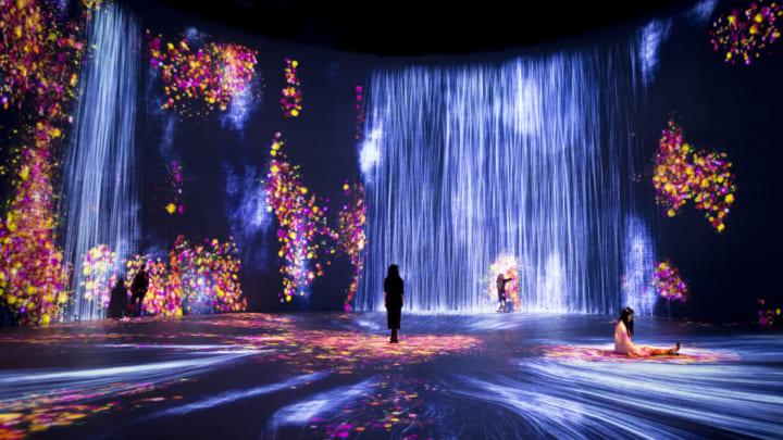 マイアミの体験型アートセンター「Superblue Miami」 オープニング展にチームラボが大規模な作品を披露