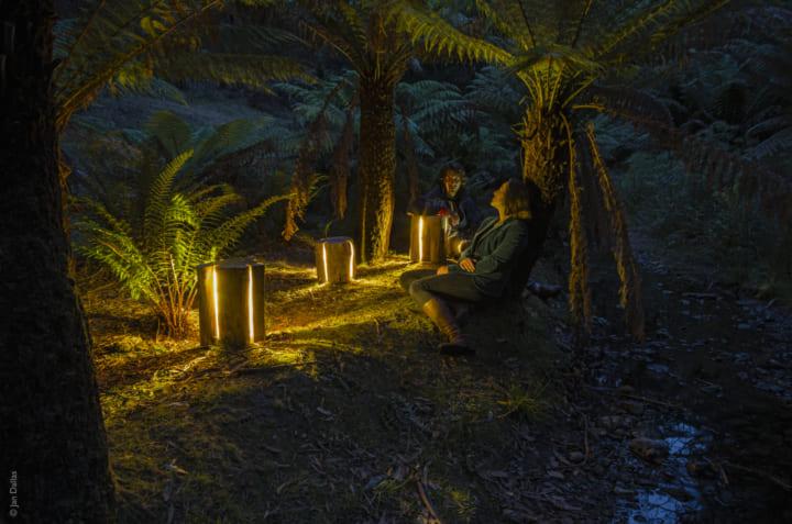 タスマニアの美しい広大な自然に インスパイアされた 切り株照明「 Stump」
