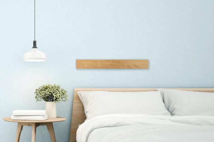 テクノロジーを住宅に取り込む「ジブンハウス」は デジタルパネル「mui」を標準装備に