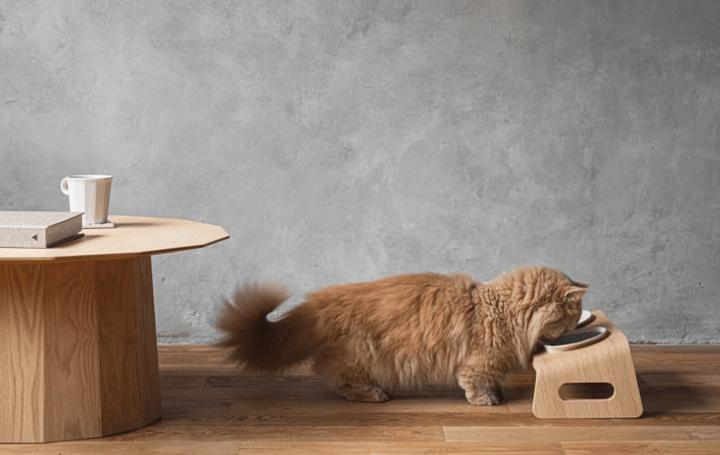 猫用木製家具ブランド「KARIMOKU CAT」に 猫が楽に食事できるテーブルセットが登場