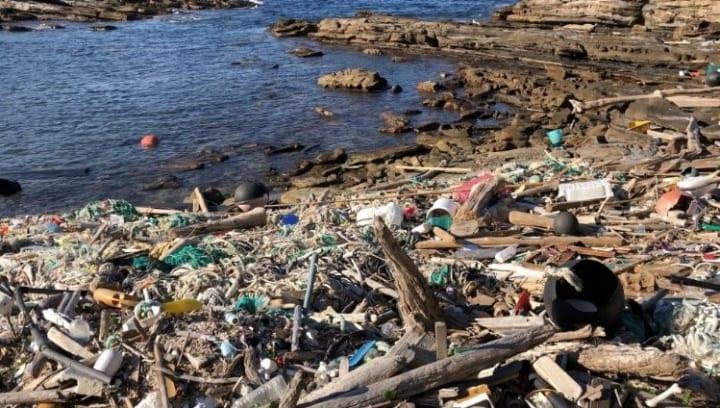 伊藤忠商事、海洋ごみ由来のゴミ袋を開発 長崎県対馬市の海岸清掃活動に一部無償提供