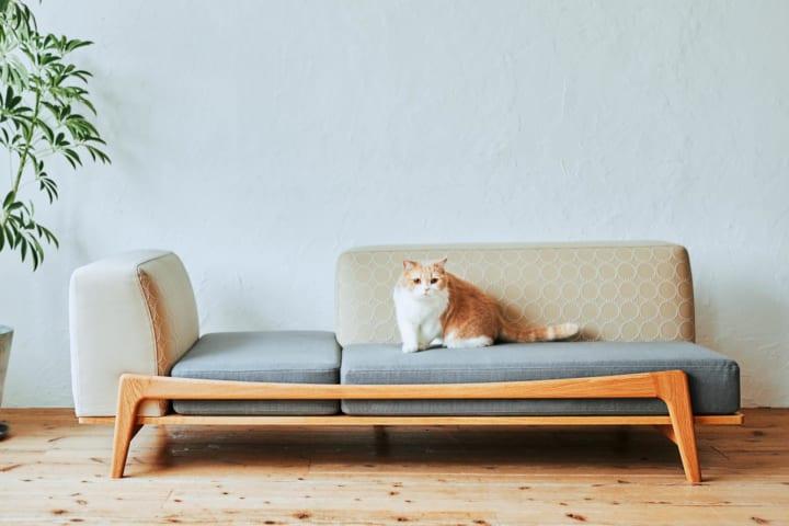 猫の健康をサポートするブランドRINNが監修 人も猫も安定した座り心地を実現するソファ