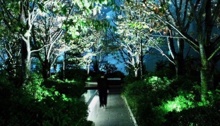 「耳で視る」音のインスタレーション サウンドアーティストevalaの新作「Inter-Scape – Grass Calls」