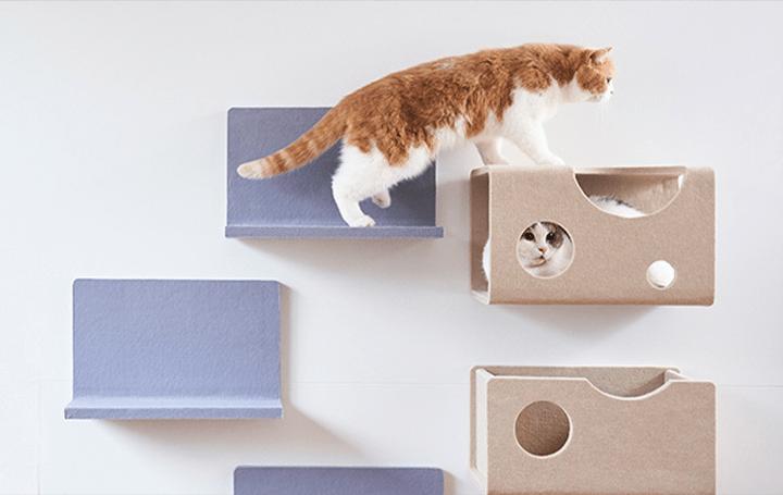 猫の性格や年齢に合わせてアレンジできる LIXILのキャットウォール「猫壁」