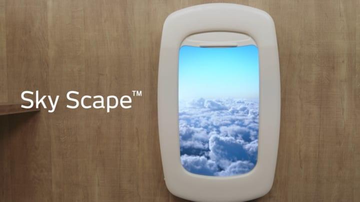 空間演出プロダクト デジタル飛行機窓「Sky Scape」とデジタル盆栽アート「Terra Bonsai」