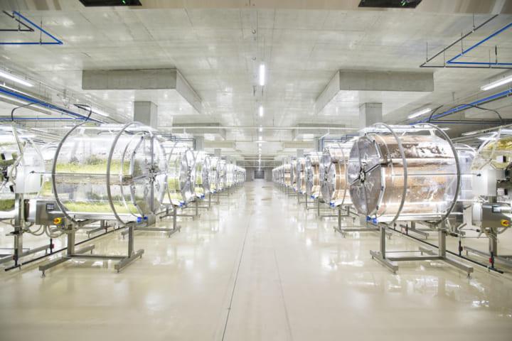 村上農園、完全人工光型植物工場となる 「スーパースプラウトファクトリー」を山梨県に新設