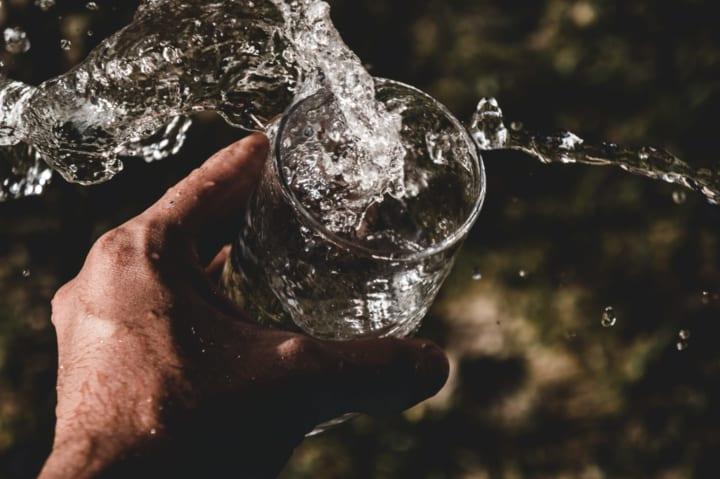MIT、「木部」から地下水のバクテリアを除去する フィルター性能を発見
