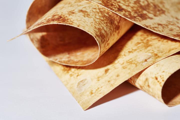 インドネシアの発酵食品テンペをヒントに Mycotech Labが素材「マッシュルームレザー」を開発