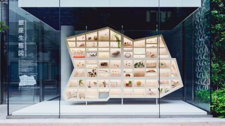 資生堂×博展、銀座を発見-観察-創造 「GINZA Sustainability Project」を展開
